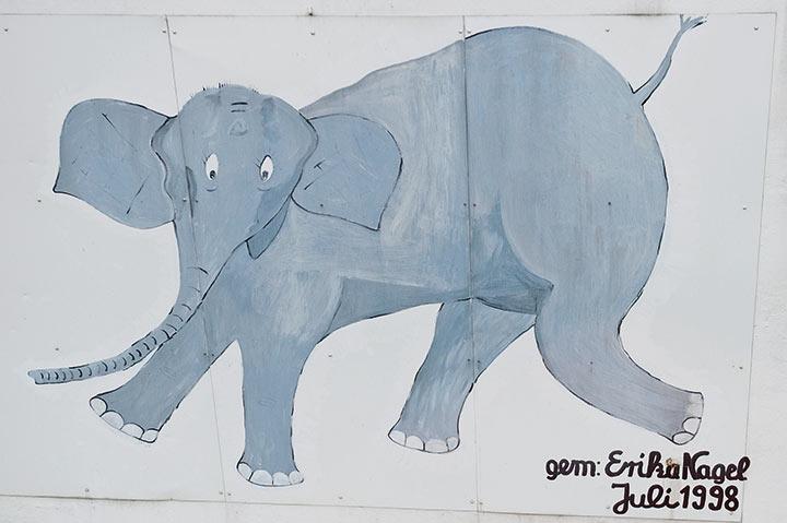 Den Fall des Elefanten Tuffi haben die Schads damals selbst miterlebt
